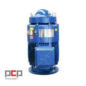 الکتروموتور سه فاز چدنی استریم ۱۸۵ کیلووات ۱۵۰۰ دور عمودی